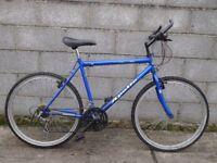 mens bike blue apollo 26 ''