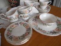 Paragon China Tea Set -Country Lane