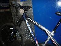 Gt aggressor xc 3 mountain bike
