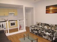 Holiday Apartment / Short term / Baker St / central London / A spacious 1 bedroom modern apartment