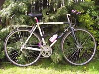 Retro Raleigh Equipe Hybrid Bicycle / Racer / Mountain Bike - Stunning condition & very light