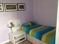 1 Large Furnished Bedroom