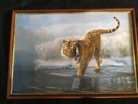 Large Framed Print of Tiger