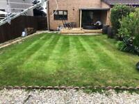 AEA garden service grass cutting & hedge cutting