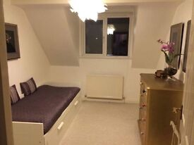 Cosy double/spacious single Room to Rent from April own bathroom, by the sea and one hour to London!