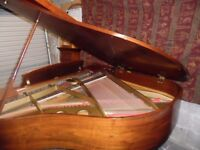 baby grand piano by hyundai 5ft mammoth saving on new one