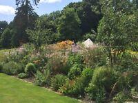 Gardener and landsman needed near Honiton