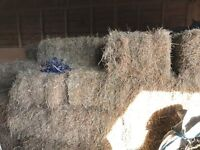 Hay - Good Quality 2016 Meadow Hay