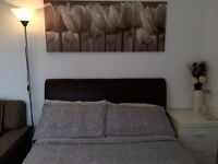 Spacious Double room in a 2-Bed flat