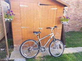Ladies Raleigh Mountain Bicycle in good condition