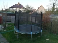 Trampoline free to go if picked up before monday