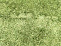 Very High quality Artificial grass/Astro turf