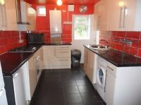 4 Bedroom Property Available to Rent in West Reading- 2 bathrooms, permit parking, lounge, diner