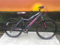 BOSS PULSE HT Hard Tail Ladies Disk Brake Mountain Bike - RRP £225