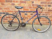 RALEIGH 15 SPEED 26 INCH WHEELS 19 INCH FRAME MOUNTAIN BICYCLE ALL COMPLETE WORKING TLC