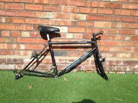 Diamond Back Sorrento Mountain Bike MTB Frame - 1992