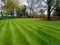 Garden maintenance/lawn mowing