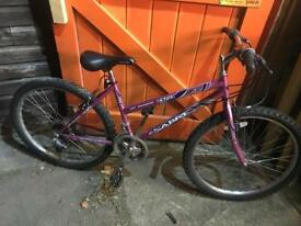 "Ladies Bike, 17"" Frame, Serviced. Free Lock, Lights & Local delivery."