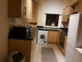 Large Double room for Muslim or Vegetarian