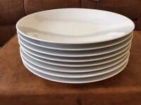 Dinner plates x 8