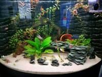 fish tank inserts