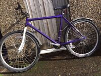 bikes for sale 5*