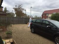 EASTER BUNNY HOME VISITS BY RICHES ENTERTAINMENTS IN IPSWICH AND THE SURROUNDING AREAS.