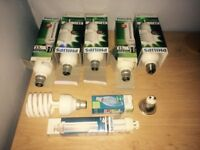 Set of New and Used philips bulbs
