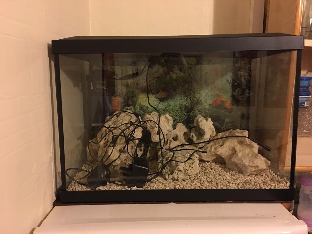 Superfish aquarium fish tank aqua 60 - Superfish Fish Tank 60 Litres