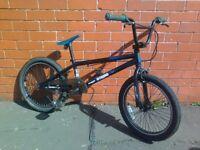 Scorpion Professional Jump BMX bike.