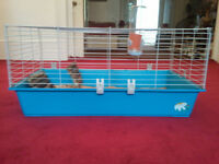 VERY LARGE, INDOOR CAGE, SUITABLE FOR GUINEA PIG OR A SMALL TO MEDIUM SIZE RABBIT