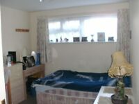 Room TO Let Edmonton Angel N18