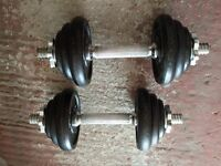 Pair of 10kg adjustable dumbbells - 20kg total - £20