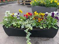 Large winter window boxes