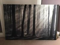 Gorgeous Large black and white canvas 120cm x 80cm