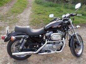 Harley Davidson Sportster 1200 Sport