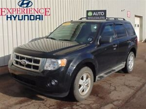 2010 Ford Escape XLT Automatic THIS WHOLESALE WILL BE SOLD AS-T