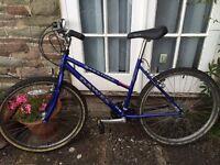 Ladies Dawes Saratoga mountain bike for sale