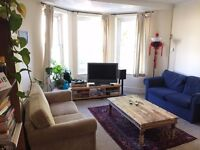 Double room available in bright, spacious two bed flat