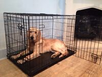 Gently Used Large Dog Crate