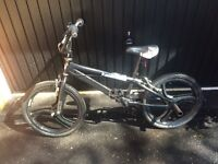 Zinc BMX bike with spoke mag rims and stunts pegs