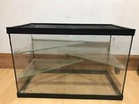 Glass cage for rodents