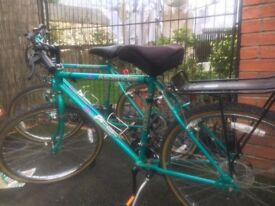 Raleigh Ascender Mountain Bike 15 speed excellent condition