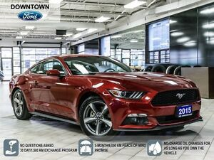 2015 Ford Mustang V6, Low Mileage Trade in, Back up camera, Blue