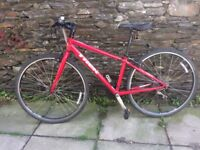 Trek Hybrid 7.2 FX Bicycle. Small or Med/Lg: Buy one or Buy Both. Good Condition, Perfect Adjustment