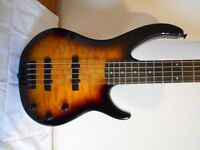Imaculate 5 string bass