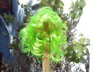 Green wig / green hair - fancy dress
