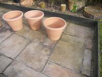 a selection of 6 plastic plant pots