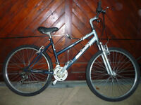 ladies raleigh mountain bike nice condition ,18 gears no longer needed