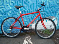 ***RETRO RALEIGH USA DESIGN MOUNTAIN BIKE JUST SERVICED SHIMANO GEARING WITH MANY NEW PARTS***